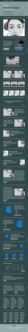 23_linus-newsletter-with-template-builder-v22.__thumbnail