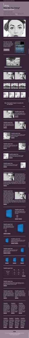 25_linus-newsletter-with-template-builder-v24.__thumbnail