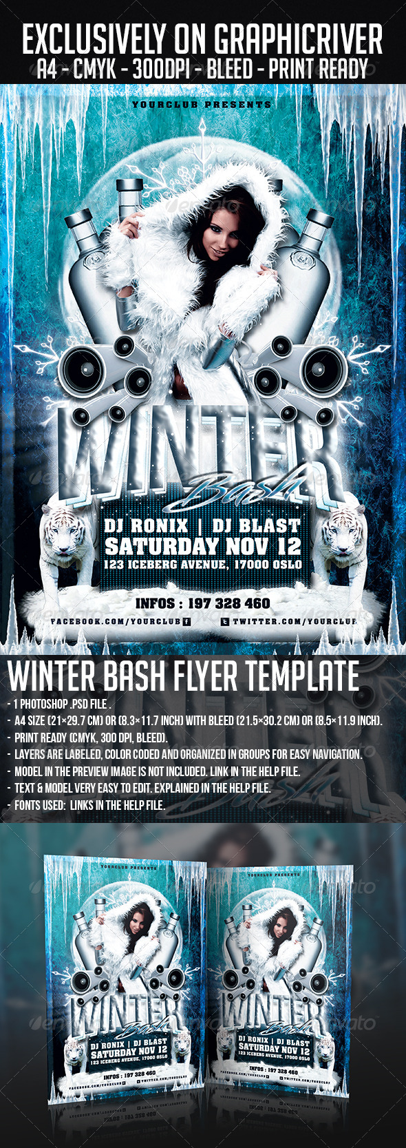 GraphicRiver Winter Bash Flyer Template 5995873