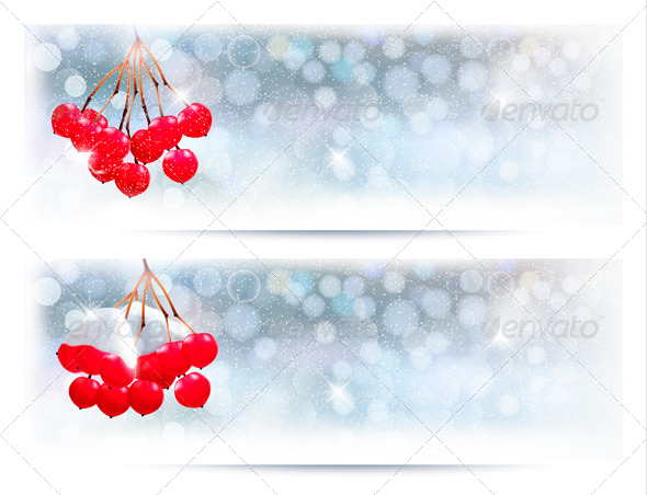 GraphicRiver Holiday Banners with Christmas Branch with Berries 5997965