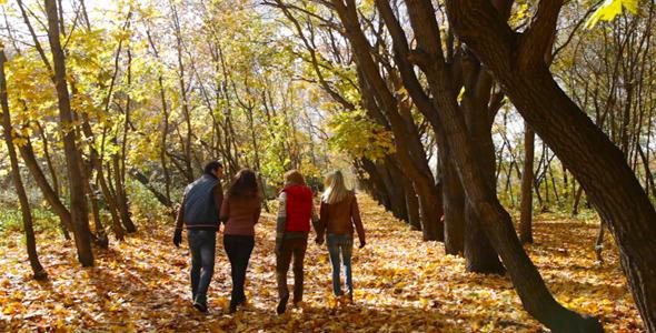 Autumn Park Leisure