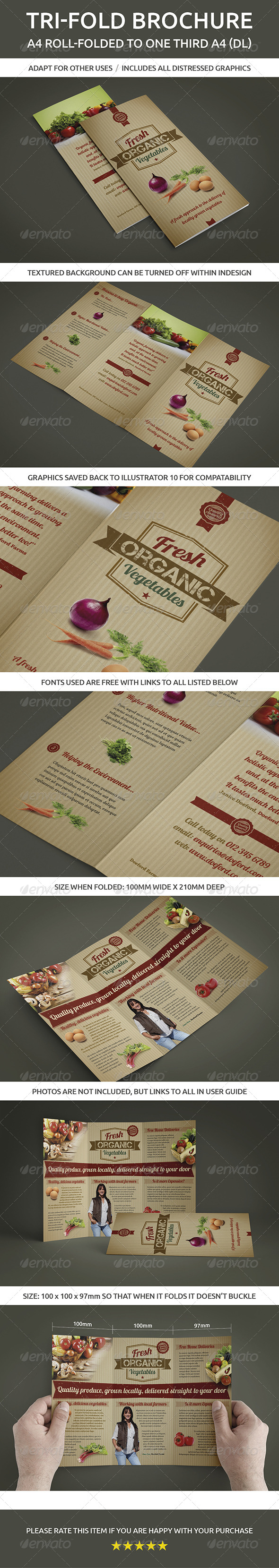 GraphicRiver Tri-fold brochure A4 roll-folded to one third A4 5984639
