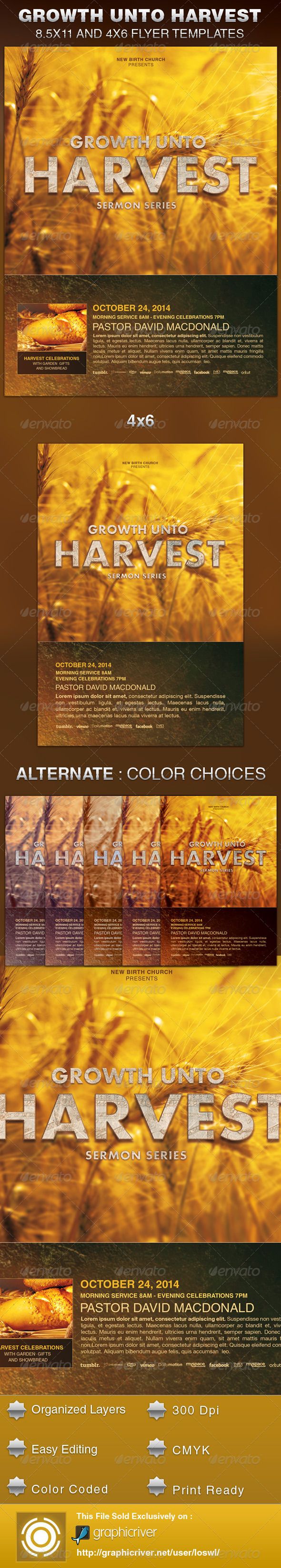 GraphicRiver Growth unto Harvest Church Flyer Template 6001484
