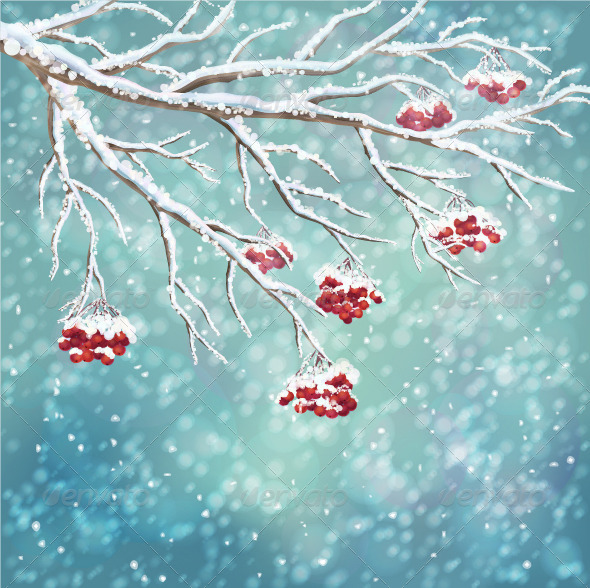 GraphicRiver Winter Snow-Covered Rowan Berry Branch Background 6017872