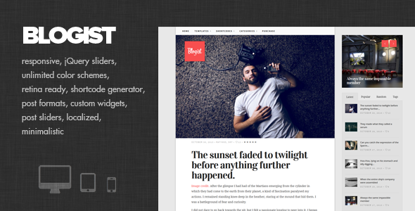 ThemeForest Blogist Personal Blog theme 6018178