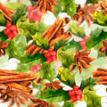 Christmas Holly with cinnamon - PhotoDune Item for Sale