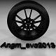 Angm_evo2013
