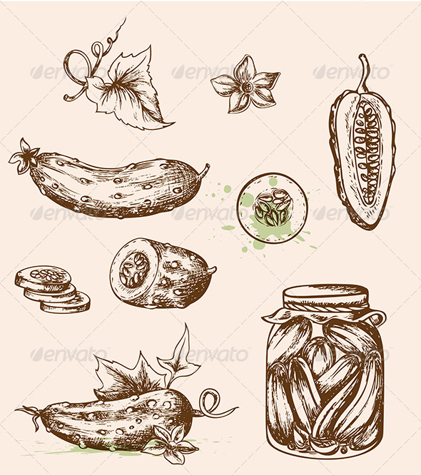 GraphicRiver Vintage Vector Cucumbers 6038607