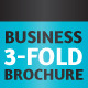 Business 3-Fold Brochure - Multi Color InDesign