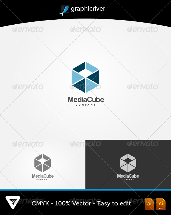 GraphicRiver Media Cube Logo 6047073