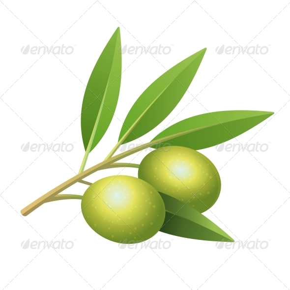 GraphicRiver Isolated Olive s Branch 6047856