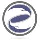 Eagle Force Logo Template