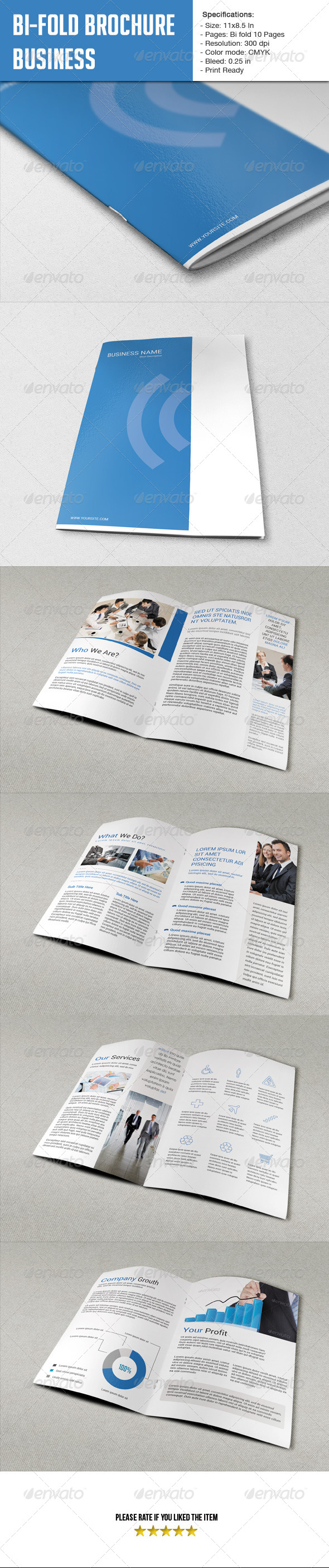 GraphicRiver Bifold Brochure for Business-10 Pages 6050141