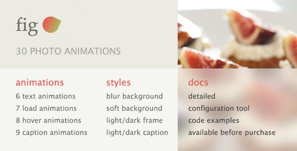 CodeCanyon 30 Photo Animations 6000717