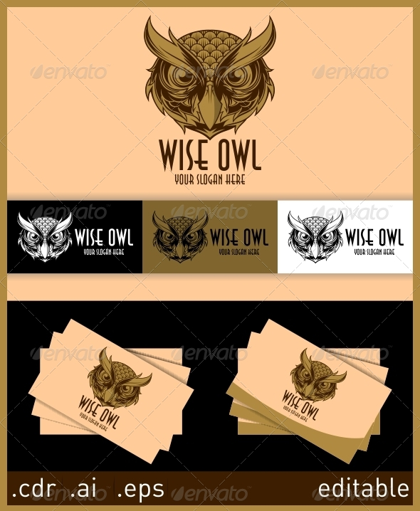 GraphicRiver Wise Owl Logo 6052133