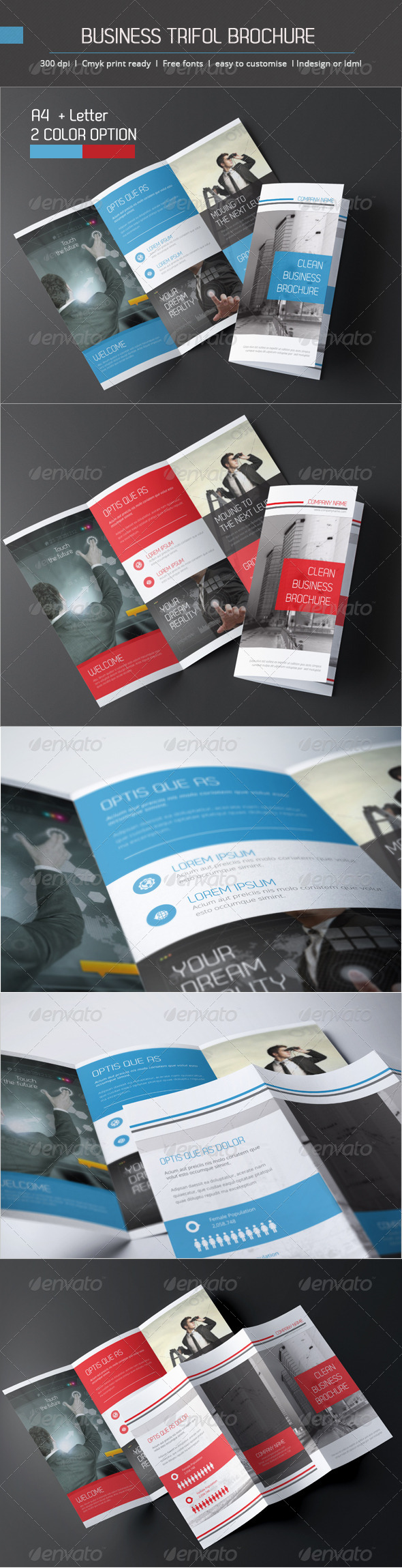 GraphicRiver Business Trifold Brochure 6057806