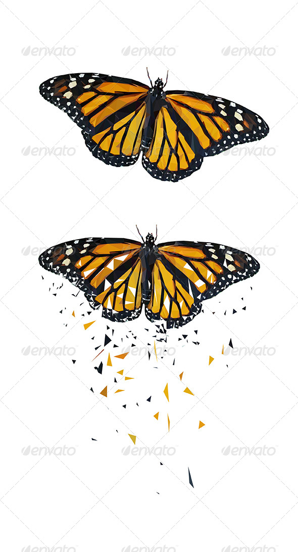 GraphicRiver Butterfly Vector Triangled 6066787