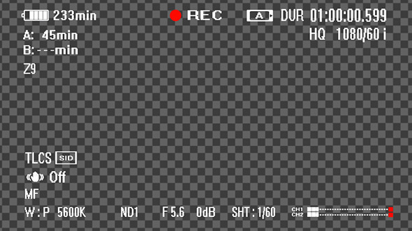 Digital Camcoder Recording Screen