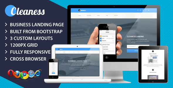 View live Demo for Cleaness - A Clean and modern business Responsive Landing Page Template