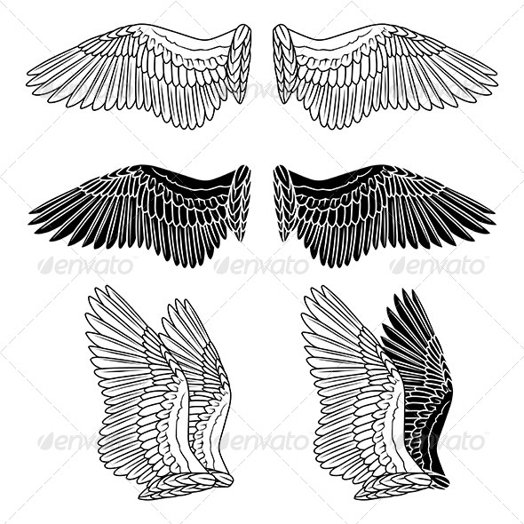 GraphicRiver Dove Wings 6074528