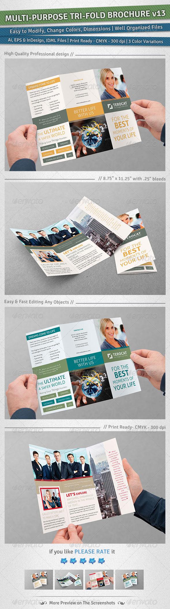 Multi-purpose Tri-Fold Brochure Volume 13