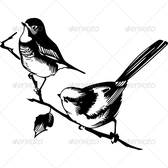 GraphicRiver Birds on the Branch 6084301