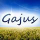 Gajus-Images