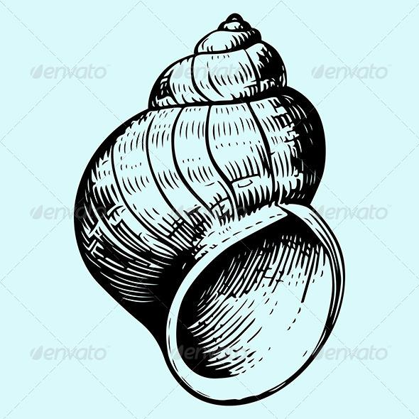 GraphicRiver Seashell 6100956
