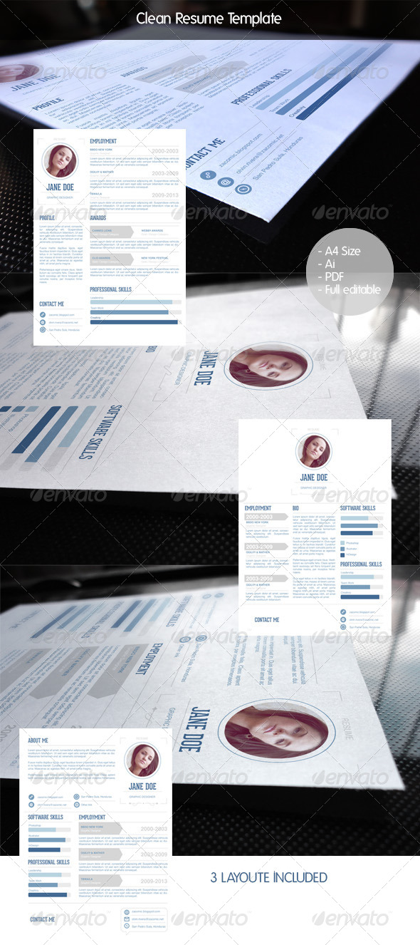 GraphicRiver Clean Resume Template 6101710