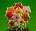 Colorful flower cookies bouquet - PhotoDune Item for Sale