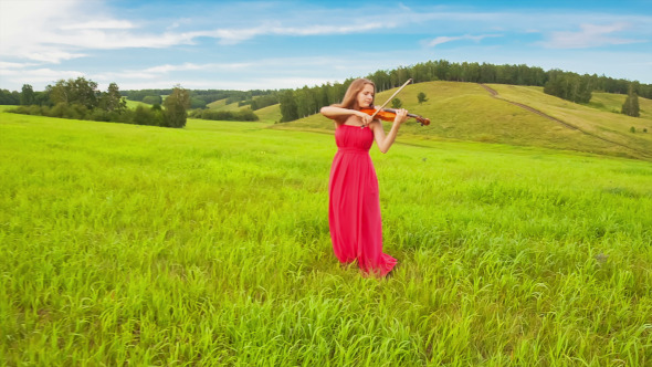 Violinist on a Green Meadow