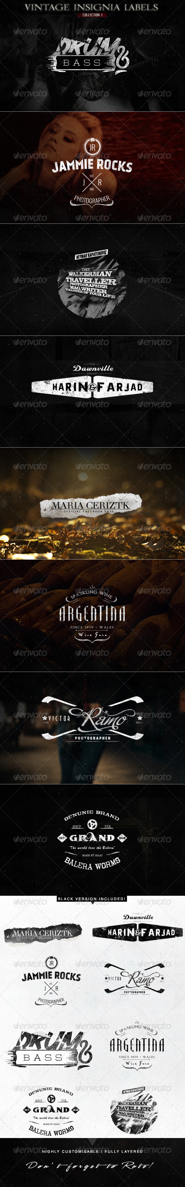 GraphicRiver Vintage Insignia Labels for Logo & Branding 6115346