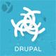 Creatiz - Trendy beautifully Drupal theme - ThemeForest Item for Sale