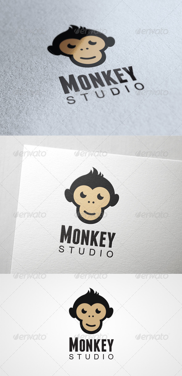 GraphicRiver Monkey Studio 6134517