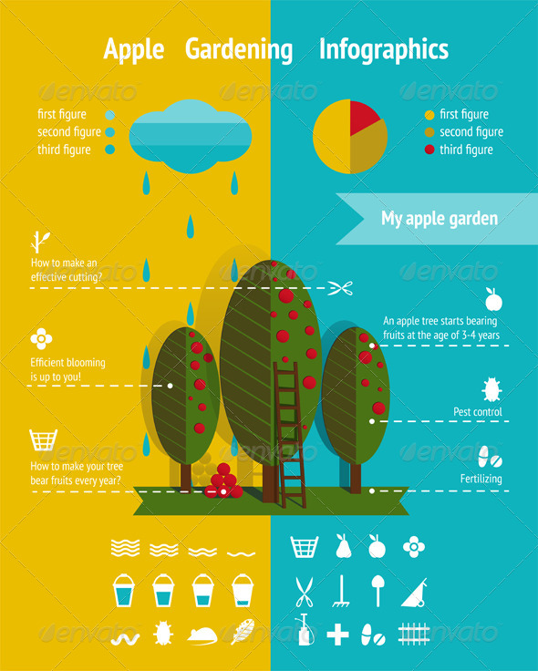 GraphicRiver Growing Apple Garden Infographics Elements 6134875