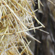 Straw Bale 2 - VideoHive Item for Sale