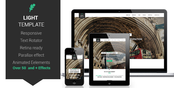ThemeForest Light Responsive Retina Ready One-Page Template 6136208