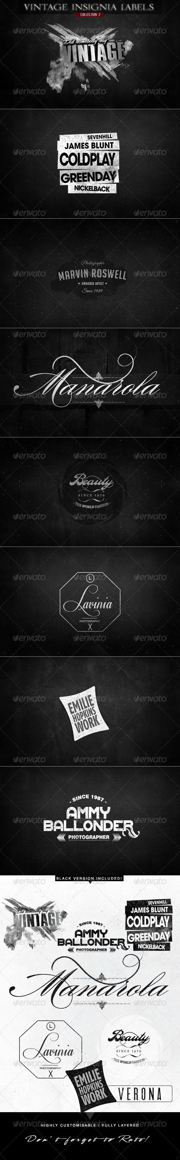 GraphicRiver Vintage Insignia Labels for Logo & Branding v.2 6136254