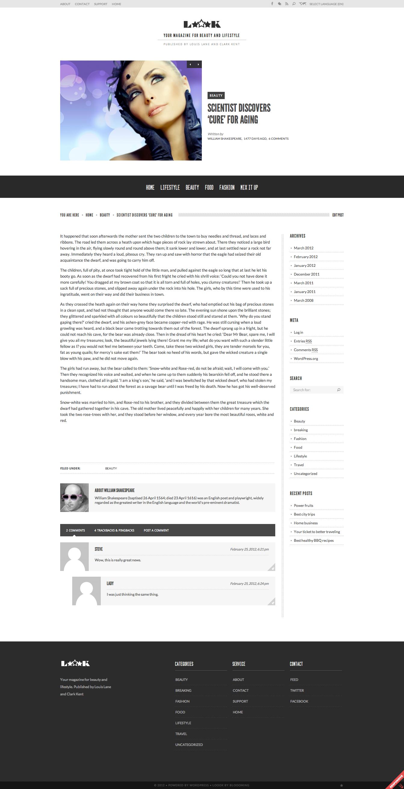 Loook - Responsive Magazine or Blog