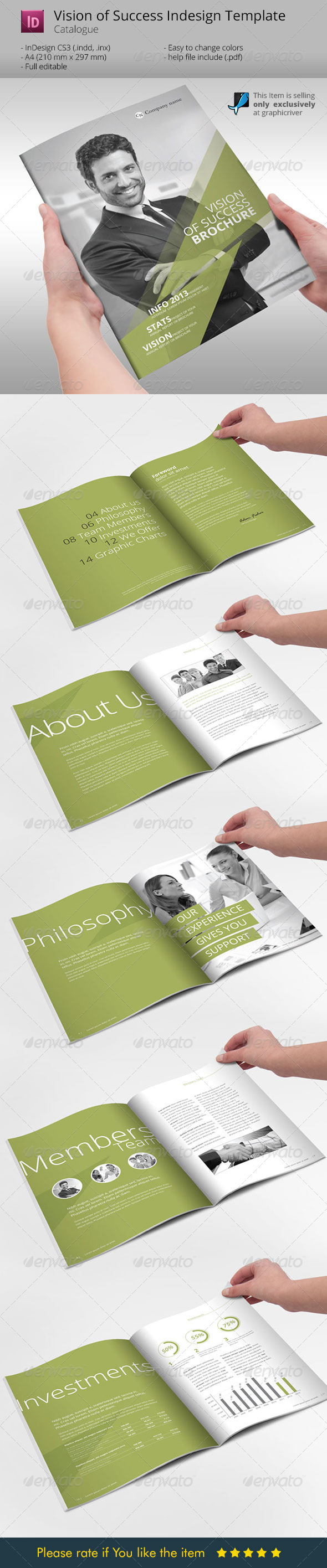 GraphicRiver Vision of Success Indesign Template Brochure 6138801
