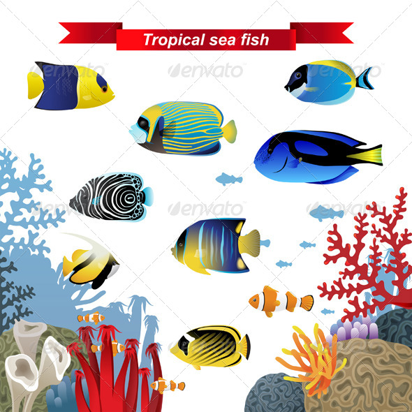 GraphicRiver Coral Reef Fishes 6156086