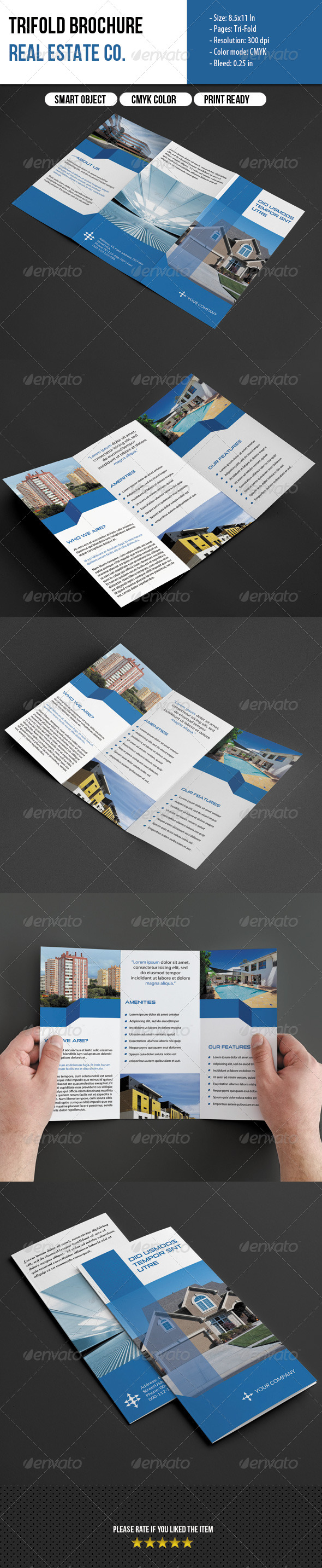 Trifold Brochure-Real Estate