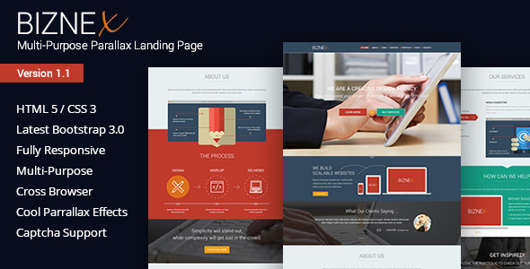 BizNex | Multi-Purpose Parallax Landing Page