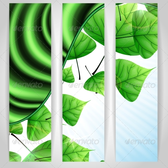 GraphicRiver Eco Green Background with Leaves 6176565