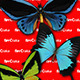 44 Different Species of Butterflies - GraphicRiver Item for Sale