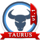 Taurus - Responsive Bootstrap3 Admin Template - ThemeForest Item for Sale