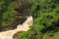 Murchison Falls From Below - PhotoDune Item for Sale