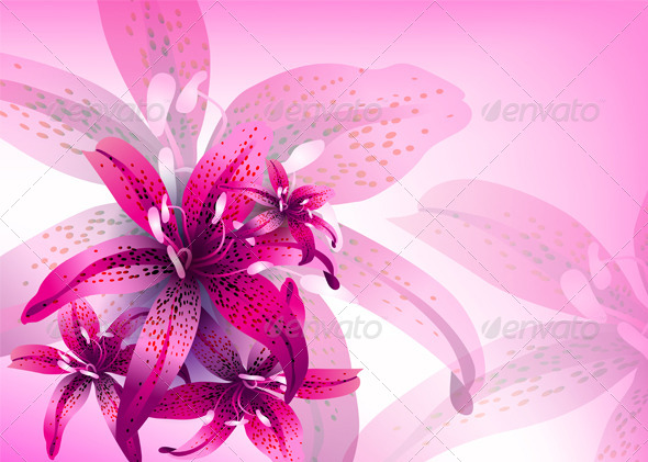 GraphicRiver Floral Vector Background 6189694