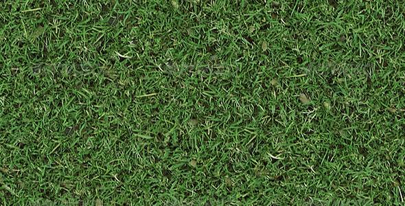 3DOcean Autumn Tileable Grass 6189388