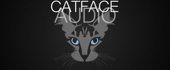 CatFaceAudio